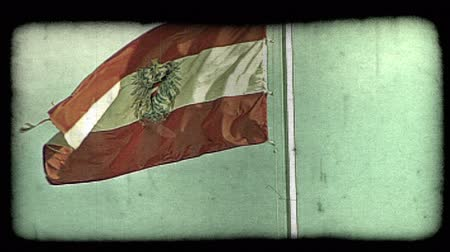 tahıllar : Shot of the Austrian flag in Vienna. Vintage stylized video clip.