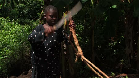 etnia africano : Medium shot of deaf girl hitting a stick with her machete.