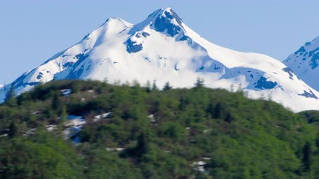 vacation : Traveling time-lapse view of a snow covered mountain in Glacier Bay National Park,Alaska. Snow covered mountain in background with green mountain in foreground,filmed from a traveling cruise ship in the Inside Passage in Alaska on June 2nd,2009