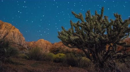 nevada : Timelapse shot of the Nevada desert at night Stock Footage