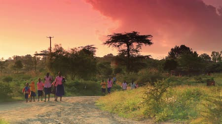 download : Huge groups of kids walking to school as the sun is coming up. Most of them have plastic bags in their hands.