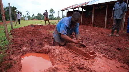 lití : A man standing in red mud expertly shapes clay into brick molds. He gives the wet brick to another to deposit in the grass for drying. Filmed in Kenya, Africa.