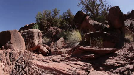 скат : Moving shot of desert scenery in Moab, Utah.