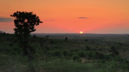 tradição : Shot of sunset on the horizon in Kenya, Africa.