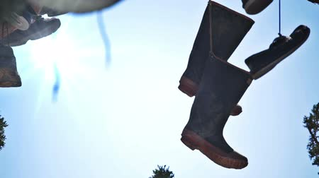 tradição : Pan of a few pairs of shoes hanging in a tree. Shoe tree. Stock Footage
