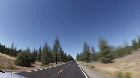 vízválasztó : Driving down straight highway surrounded by large pine trees. Redwoods. California. Stock mozgókép
