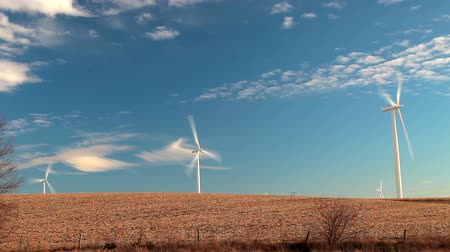 moinho de vento : Stationary shot of windmills in an open field with a beautiful cloudy blue sky background, located in Iowa.