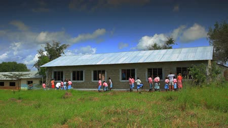 horas : Painting the exterior of a school in a village in Kenya two hours north of the Africa city Mombassa. Stock Footage