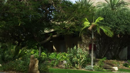 dead tree : Still shot of a residence with trees, grass, flowers, shrubs, light pole, walkway and telephone poles, at the Kibbutz in Ein Geti Israel. shot with the Red One digital camera at 4k 4096 x 2304 resolution. Shows just hoe nice you can make place in the barr Stock Footage