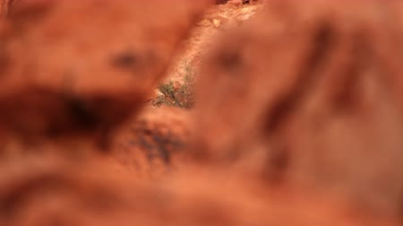 západ : Rack focus of red rock at Valley of Fire state park in Nevada. Filmed on September 12,2012