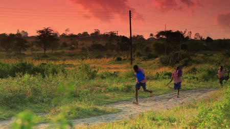 download : A group of students walking to school as the sun is coming up.