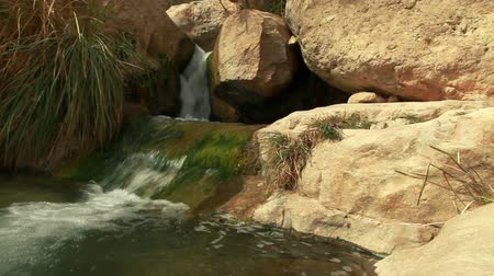 waterfall cascading into pool : A pool at the Ein Gedi Nature Reserve in Israel with a stream of water flowing through the rocks and into the pool from a small cascade.