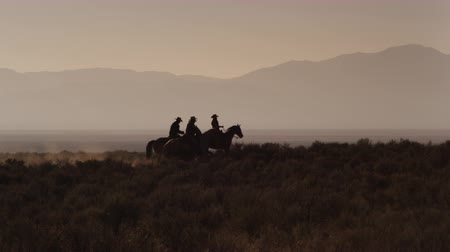 batı : A silhouette group of 4 cowboys mosey from camera left to camera right. Shot at sunset Stok Video