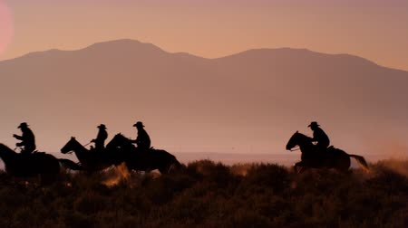 Slow motion shot of group of cowboys rding horses. Mountains are visible in background. Shot at dusk Стоковые видеозаписи