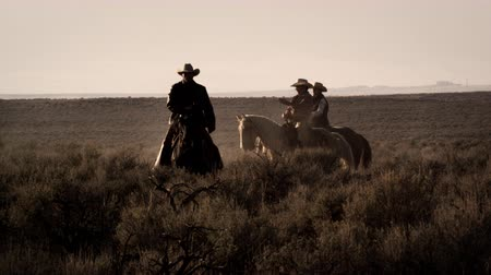 égua : Slow motion shot of cowboys in the middle of brush. One cowboy is riding while the others are standing still Vídeos