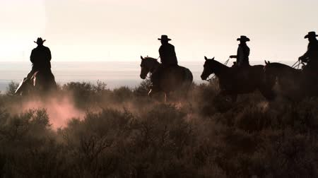 Slow motion shot of cowboys galoping through the desert. Dusk kicks up as the horses gallop. Sunlight is visible in background