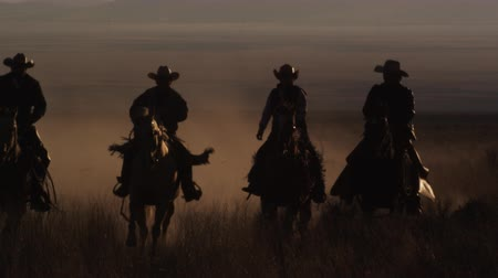 запад : Slow motion panning shot of four cowboys riding horses leaving a trail of dust. This was shot in slow motion at sunset using a high speed camera.