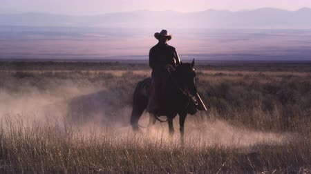 masculino : Slow motion static shot of a cowboy riding a horse in a swirl of dust. The rider and his horse are in an open field and a mountain range can be seen behind them. This was taken with a high speed camera.