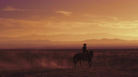 koń : Slow motion shot of a cowboy riding a horse. This shot was taken at sunset on an open field with a mountain range in the background.