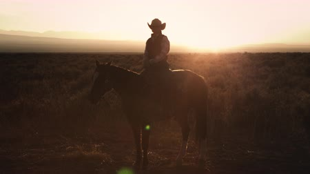 batı : Static shot of a cowboy sitting on a horse with the sunset at his back