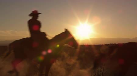 Slow motion shot of cowboys galloping at sunset. The horses kick up dust as run,silhouetted by the setting sun