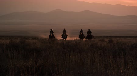 cavalos : Slow motion shot of four cowboys galloping in distance. Sky is pink in the background. Dust is visible behind horses.