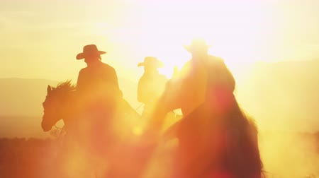 Cowboys galloping into dusk. Lens flare is visible