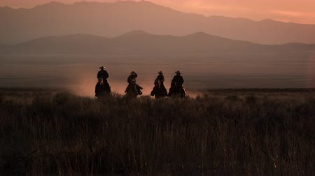wild animal : Slow motion shot of four cowboys galloping in distance. Sky is pink in the background. Dust is visible behind horses.