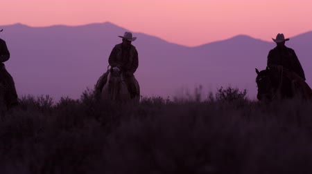 égua : Slow motion shot of cowboys riding towards the camera. Sky is pink in the background and the mountains appear purple. Shot in slow motion.