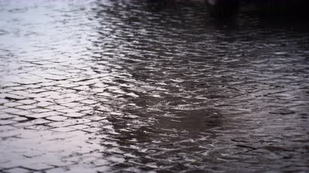 macskaköves : Footage of a thoroughly soaked street in Rome,Italy. A car drives through the shot and more rain drizzles the ground. Filmed on May 7,2012