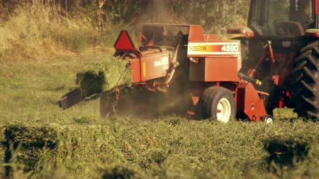 szalma : Shot of a farmer operating a hay baler as he goes around the field. The camera moves from left to right as it follows the movements of the hay baler.
