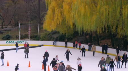 skate : Tilt shot of skating rink in central park new york. Stock Footage