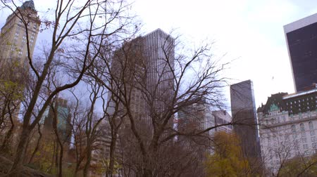 vysoký úhel pohledu : Panning shot of buildings behind trees in New York City. The buildings are behind some trees that partially cover the city scape. Dostupné videozáznamy