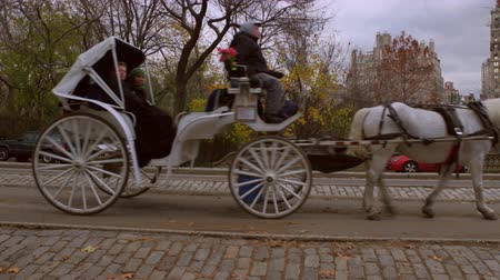 se movendo para cima : Slow panning shot of two horse drawn carriages in NYC.