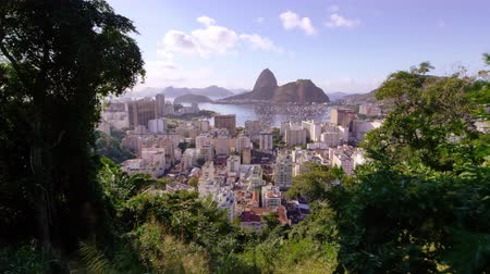 sharpened : Tracking shot of colorful Rio de Janeiro. Framed, with definition, by a Brazilian sky and tropical trees.