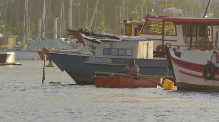 favori : Slow motion of a man rowing a boat in golden sunlight at Guanabara Bay. Filmed June 19, 2013 Stok Video
