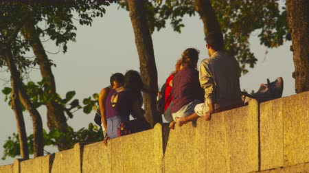 beton : Static show of lovers and other people sit atop a underneath trees on retaining wall in Rio de Janeiro. Stok Video