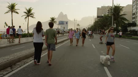 brasil : Slow motion tracking shot of a blond girl walking her Bichon Fris down Avenida Vieira Souto as crowds of people, a skateboarder and a trio of girls are all around her