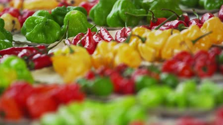 üretmek : Close-up rack shot of pepper varieties in a market in Rio de Janeiro, Brazil