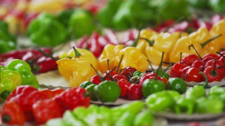 biber : Close-up panning shot of different varieties of pepper at a market in Rio de Janeiro, Brazil Stok Video
