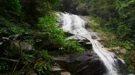 waterfall cascading into pool : Slow motion static shot of a jungle waterfall cascading down a dark rocky outcropping into a deep green pool. Tijuca National Park, Rio de Janeiro, Brazil. Filmed June 24, 2013. Stock Footage