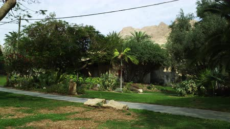 vaha : Still shot of a residence with trees,grass,flowers,shrubs,light pole,walkway and telephone poles,at the Kibbutz in Ein Geti Israel. shot with the Red One digital camera at 4k 4096 x 2304 resolution. Shows just hoe nice you can make place in the barren wor