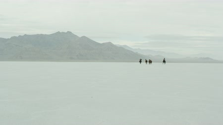 rachaduras : Slow motion of cowboys riding with a herd of horses across the Bonneville Salt Flats in Utah, far 4. Vídeos