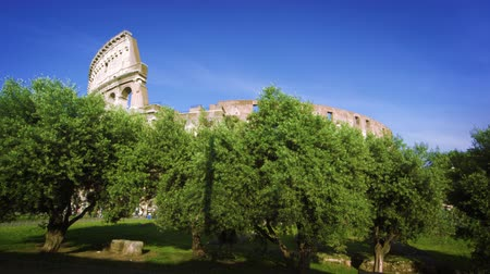 colloseum : Footage of the exterior of the Colosseum partially hidden by green trees in the foreground rising up the hill toward the Colosseum. Shot on May 6,2012 in Rome,Italy Stock Footage