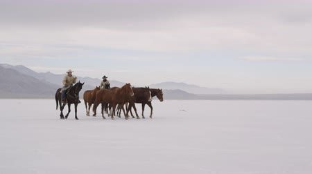 rachaduras : Slow motion of cowboys pushing herd of horses across the Bonneville Salt Flats in Utah, close. Vídeos