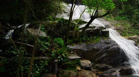 waterfall cascading into pool : Tracking shot of a jungle waterfall cascading down a rocky escarpment into a deep green pool at the bottom. Tijuca National Park, Rio de Janeiro, Brazil. Filmed June 24, 2013.