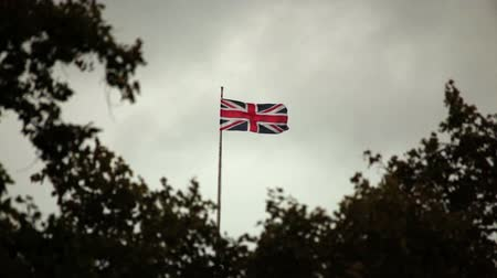 kriko : Union Jack waving in London, trees in the foreground. October 9, 2011.