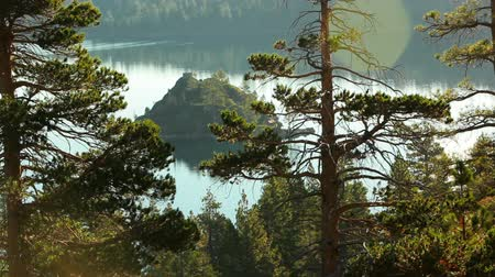 günlüğü : A static shot of Fannette Island (Tea House Island) in Emerald Bay, Lake Tahoe. The island is seen through tree branches on a hillside above. There is a bird perched in one of the trees. The lake has a very clear reflection. Shot at Emerald Bay State Park Stok Video