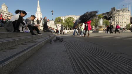 visitante : A panning shot - from right to left - of people sitting on stairs and feeding pigeons on Trafalgar Square in London. A woman is photographing and some people are passing by the camera. Filmed on October 7, 2011.