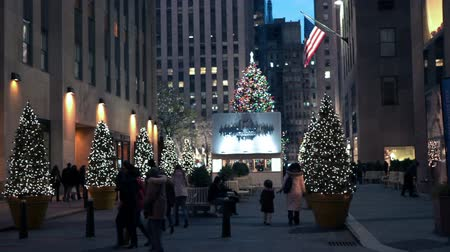 boŻe narodzenie : Decorated christmas street in New York. Wideo